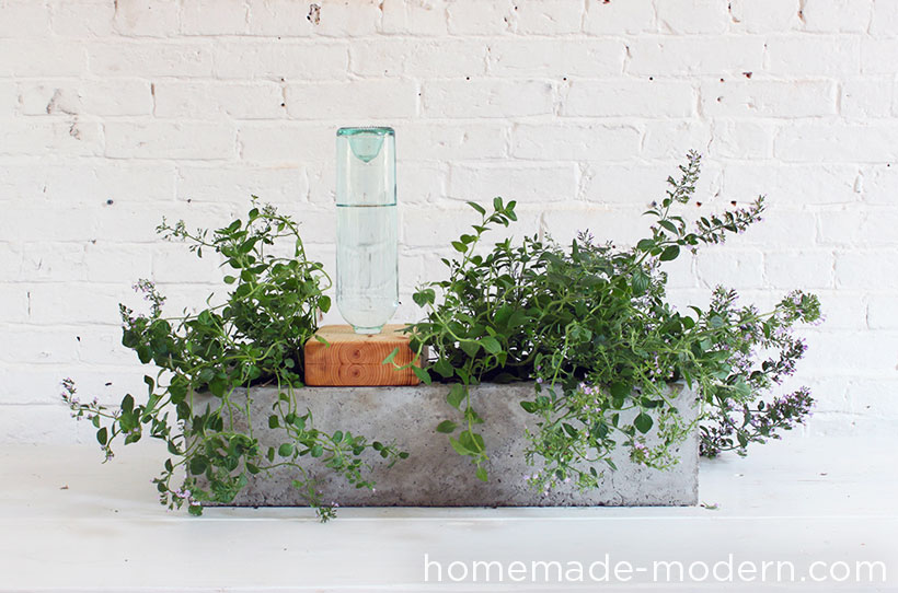 HomeMade Modern DIY Self Watering Concrete Planter Options
