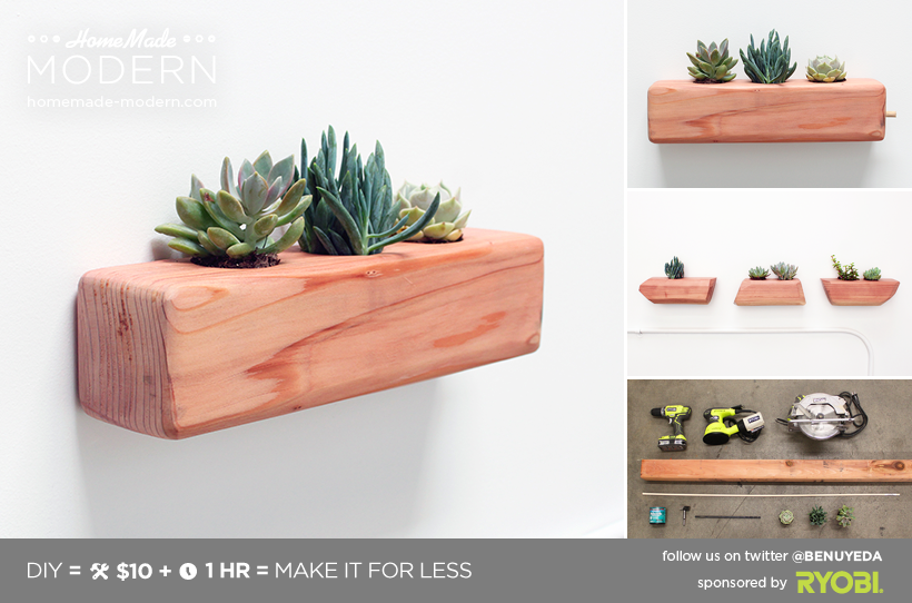 HomeMade Modern DIY Succulent Planter Postcard