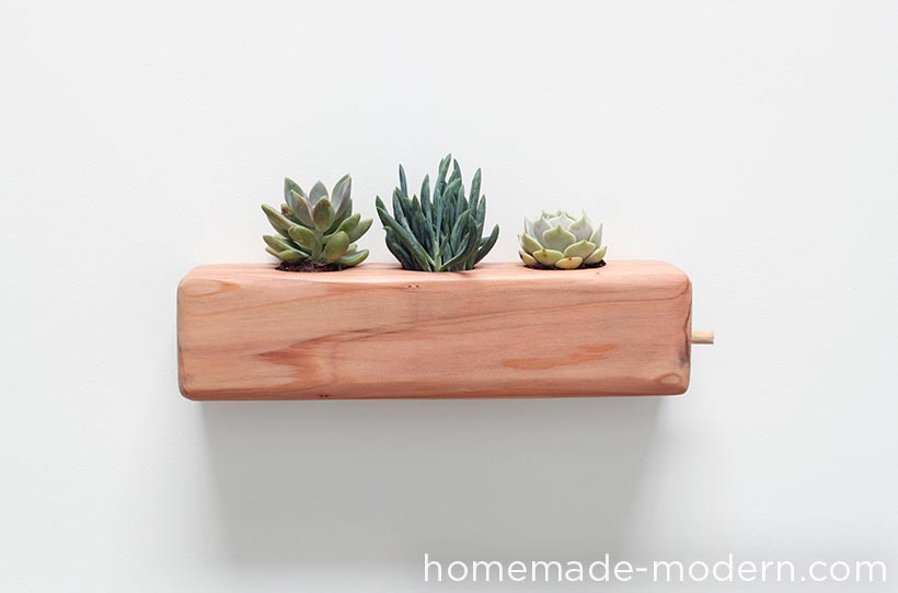 HomeMade Modern DIY EP71 Succulent Planter Options